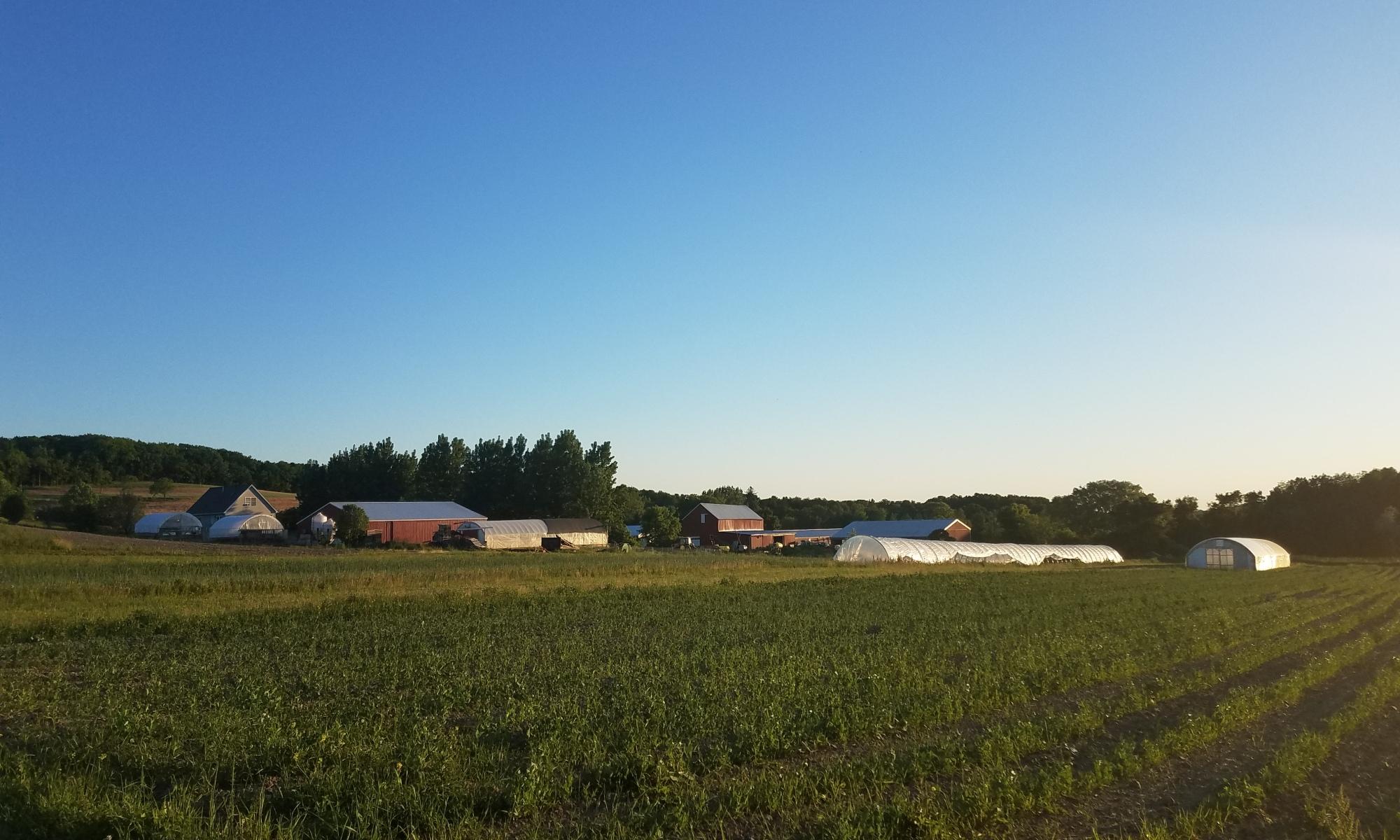 Fisher Hill Farm