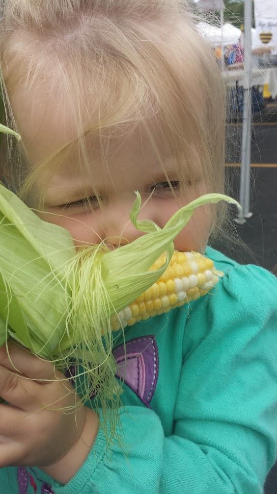 Fisher Hill Farm - Local Sweet Corn 2