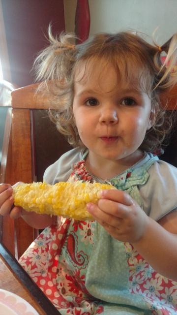 Fisher Hill Farm - Local Sweet Corn