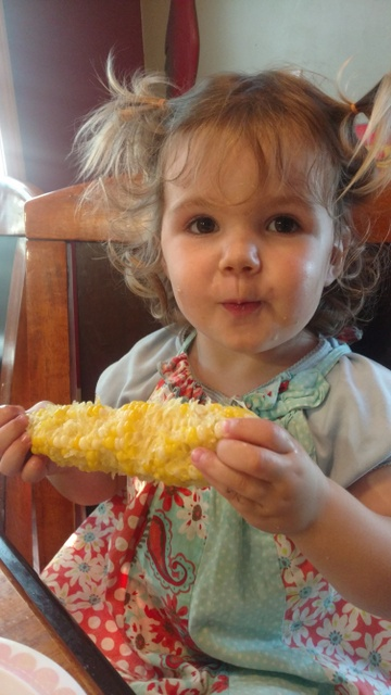 Fisher Hill Farm - Local Sweet Corn