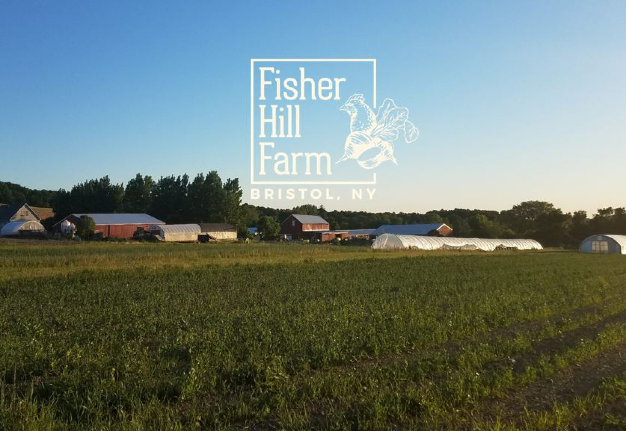 Fisher Hill Farm